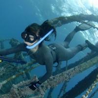 Выбираем снаряжение для подводной охоты.